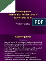 Gametogeneza