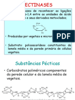 Bioquimica Aplicada Aula 5 Pectinases