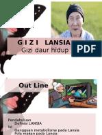 G I Z I   LANSIA
