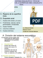 Esqueleto Axial 2014-2