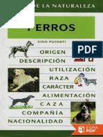 Perros - Gino Pugneti