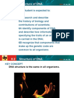 04  dna structure notes