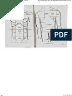 regiunile anatomice