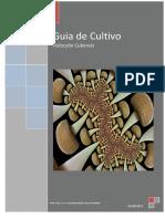 Guia de Cultivo-1.pdf