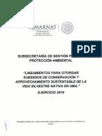 Lineamientos_2016