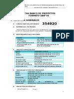 Formato SNIP 4 (1)