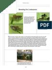 article_breed_livebearers.pdf