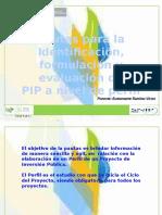 Pautas Para La Identificacion, Formulacion y Evaluacion Del Pip - Parte 01