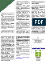 TRIPTICO+legislación+ambiental.doc