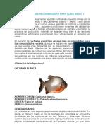 Especies de Peces Recomendadas Para Clima Medio y Cálido