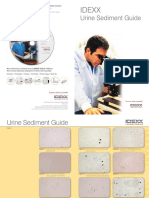 Urine Sediment Guide