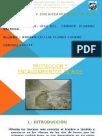 Proteccion y Encauzamiento de Rios ANDREA