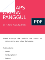 PROLAPSUS Organ Panggul Blok 23