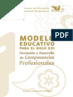 Modeloeducativo (Competencias).pdf