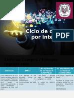Veronica Publicidad Ciclo de compra por internet.pptx