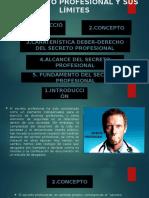 EXPSICION EL SECRETO PROFESIONAL Y SUS LIMITES----IVÁN DELGADO