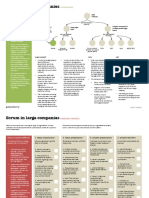 Scrum In Large Companies public edition v1.1.pdf