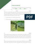5 Umpan Ikan Mujair Alami Resep Jitu Terbaik 2016.docx