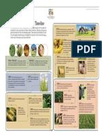 Biotech Guide Timeline Spread (1)