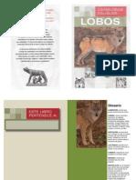 Carnívoros Salvajes Lobos Ilustrado