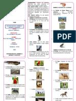 Biodiversidad de Animales Nativos y Exóticos