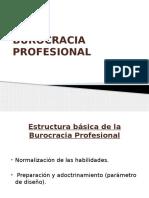 Burocracia Profesional Diapositivas