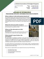 Repari of Hidrocale