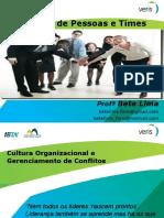 PMI - Gestão de Pessoas - Aula5.ppt