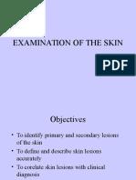 Skin Lesions