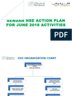 SAFETY Action Plan for 2016