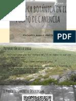 Gymkhana Botánica en El Puerto de Canencia_alejandro_romero__abelló