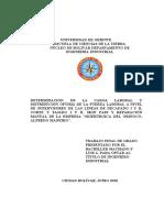 047-Tesis-Determinacion.doc