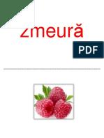 fructe 4
