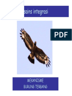 Integrasi Burung Terbang