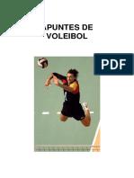 Apuntes de Voleibol