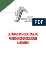 CATALOGO INSTITUCIONAL DE PUESTOS.pdf