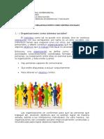 Organizacion Como Sistema Sociales-1