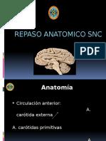 Anatomia Sistema Nervioso Central