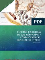 Electrofiosologia y Neuratransmisores