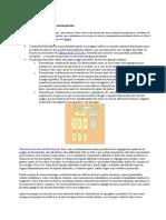 Yacimientos metálicos de origen ortomagmático.docx