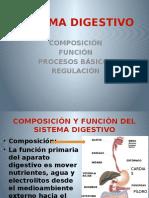 Sistema Digestivo y Renal-3
