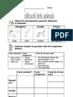 03  Classificació dels animals