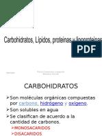 CARBOHIDRATOS  LIPIDOS