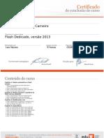 Flash Dedicado, Versão 2013