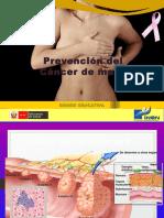 Rotafolio3 Prevencion Cancer de Mama