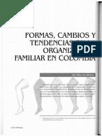 Dialnet-FormasCambiosYTendenciasEnLaOrganizacionFamiliarEn-3988246.pdf