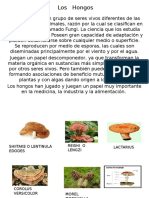 Los   Hongos.pptx