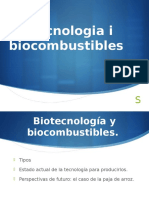 Biocombustibles Final
