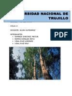 Monografia -Mineria y Medio Ambiente