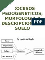 Procesos pedogeneticos